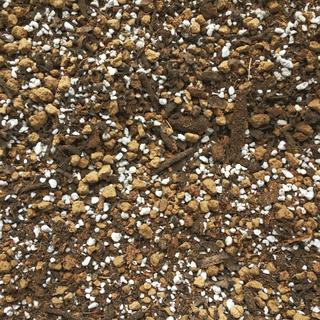 観葉植物、その他鉢植え専用、すぐに使えるプレミアムブラック培養土10リットル(その他)