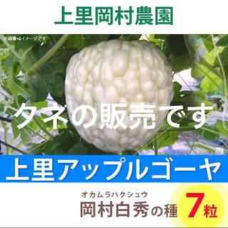 31061★HT7★上里岡村農園寅さんのアップルゴーヤ白秀のタネ7 粒(野菜)
