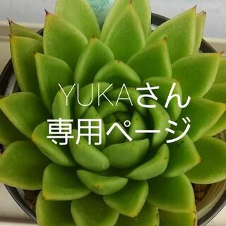 YUKAさん専用ページ(その他)