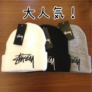 STUSSY - 【大人気!】STUSSY ニット帽 ステューシー