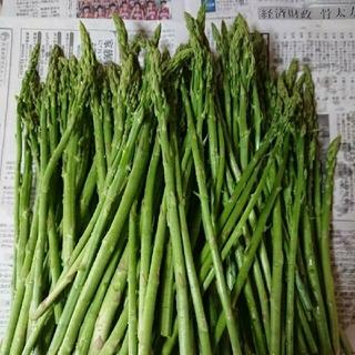 (ちゃもも様専用)佐賀県産極細グリーンアスパラ1.8キロ(訳あり)(野菜)