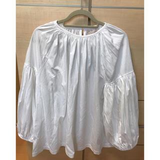 pual ce cin - ピュアルセシン シルケットコットンTシャツ