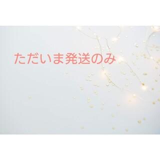 ロートレアモン(LAUTREAMONT)のシフォン素材 ブラウス  Mサイズ(シャツ/ブラウス(長袖/七分))