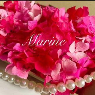 ソフトゆめ紫陽花 ピンクレッドグラデーション 母の日花材(プリザーブドフラワー)