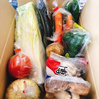 九州産新鮮野菜詰め合わせ80サイズ(野菜)