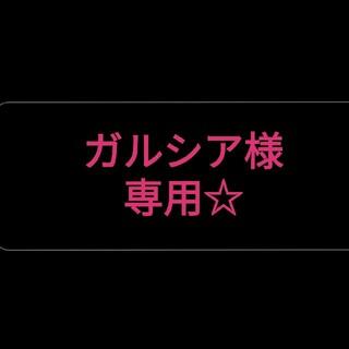 ガルシア様専用☆(その他)