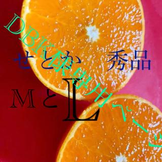 【DBK様専用ページ】愛媛 せとか 秀品M L 10キロ(フルーツ)