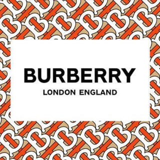 バーバリー(BURBERRY)の❀BURBERRY レディーススニーカー ローカット 8037649(スニーカー)
