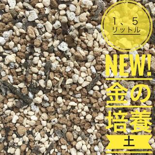届いたらすぐに使える!プロも愛用!多肉 観葉植物専用、金の培養土1、5リットル(その他)