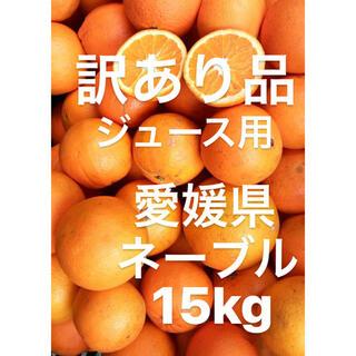 訳あり品 愛媛県 ネーブル ネーブルオレンジ 傷スレあり ジュース用 15kg(フルーツ)