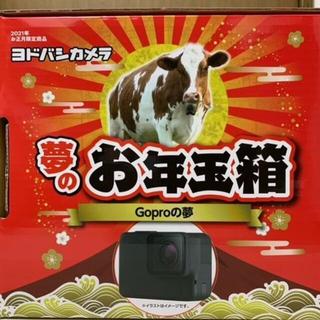 ゴープロ(GoPro)のGoPro HERO8 BLACK 夢のお年玉箱 Go Proの夢 ヨドバシ(ビデオカメラ)