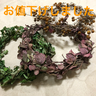 ミニリース素材 3点セット 観葉植物 グリーン 自然素材 ナチュラル 花材 U(ドライフラワー)
