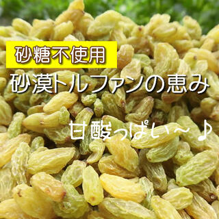 ドライフルーツ グリーンレーズン 1kg レーズン 無添加 砂糖不使用(菓子/デザート)
