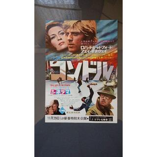 コンドル【美品】【映画】【チラシ】(印刷物)