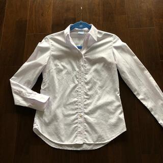 スーツカンパニー(THE SUIT COMPANY)のスーツカンパニー 38 ブラウス(シャツ/ブラウス(長袖/七分))