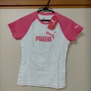 プーマ(PUMA)のPUMA レディースTシャツ Lサイズ(Tシャツ(半袖/袖なし))