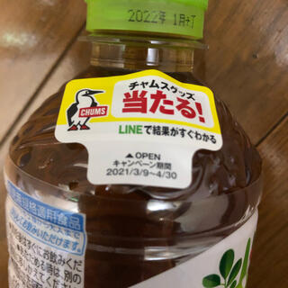 チャムス(CHUMS)のチャムス CHUMS 十六茶キャンペーン 応募シール32枚(その他)