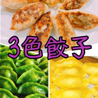 無添加3色餃子白・緑・黄色 無着色 野菜の色 皮もちもち中ジューシー 美味しい(野菜)