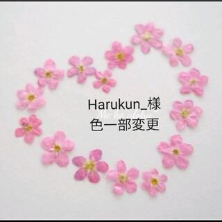 勿忘草【No. 14・ピンク】忘れな草 花材 素材 押し花 ピンク(ドライフラワー)