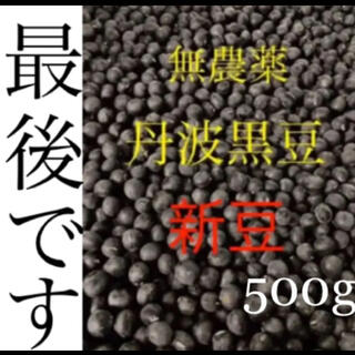 無農薬 丹波黒豆 500g(野菜)