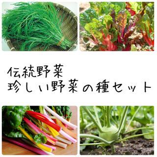 ★伝統野菜★固定種珍しい野菜の種セット(野菜)