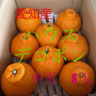 市場直送!愛知産 ハウスデコポン 8個(フルーツ)