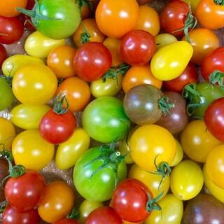 カラフルミニトマト箱込み1キロ(野菜)