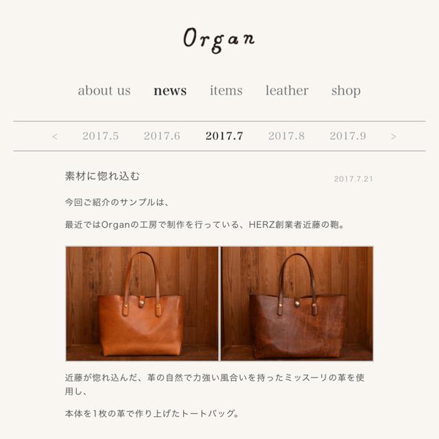 HERZ(ヘルツ)のHERZ organ  S・トート カスターニョ(M) メンズのバッグ(バッグパック/リュック)の商品写真