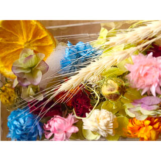 花材 詰め合わせ ドライフラワー ハーバリウム ブリザードフラワー(ドライフラワー)