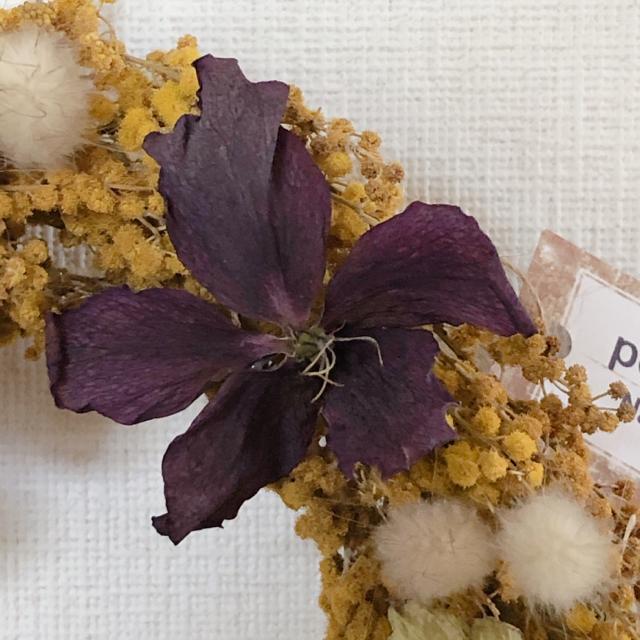 ミモザとクリスマスローズのリース No.3 ハンドメイドのフラワー/ガーデン(ドライフラワー)の商品写真