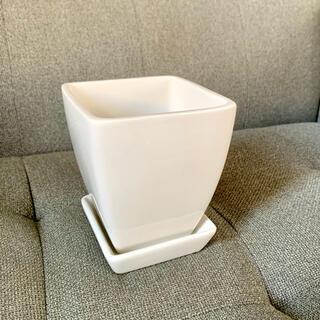 ザラホーム(ZARA HOME)のソーサー付き ★ スクエア 植木鉢 プランター(プランター)