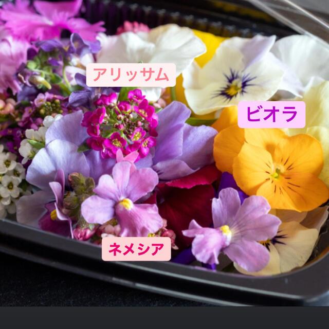 エディブルフラワー1パック 食品/飲料/酒の食品(野菜)の商品写真