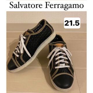 サルヴァトーレフェラガモ(Salvatore Ferragamo)のフェラガモ スニーカー レディース レザー 21.5 履きやすい(スニーカー)