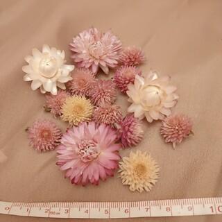 貝細工、千日紅 ドライフラワーの花材セット💓(ドライフラワー)