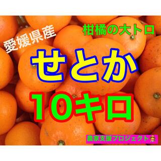TOSHI様専用 せとか10キロ(フルーツ)