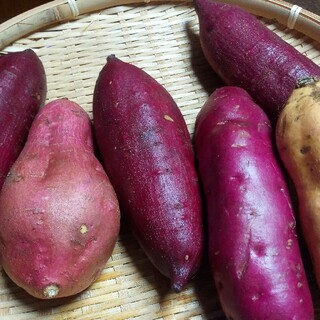 🉐💜パープルスイートロード3Kg農薬化学有機肥料不使用さつまいも(野菜)
