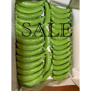 ☆SALE☆ スナップエンドウ AB品 500 g(野菜)