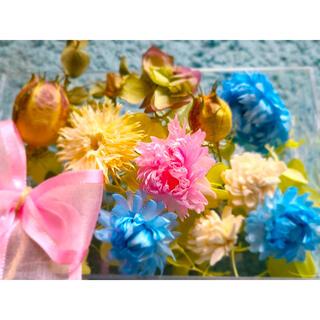 花材 詰め合わせ ドライフラワー ブリザードフラー ⑩(ドライフラワー)