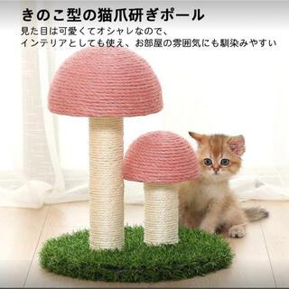 新品 猫 爪とぎ 麻 キャットタワー ねこ(猫)