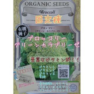 ブロッコリー グリーンカラブリーゼ 固定種 野菜の種 ハーブの種 家庭菜園(野菜)
