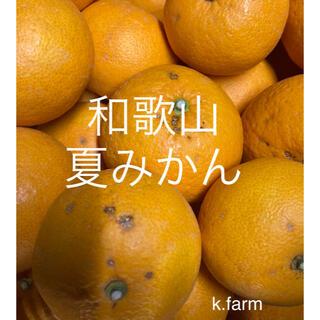 ご家庭用 和歌山産 夏みかん 5キロ(フルーツ)