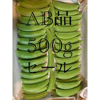 スナップエンドウAB品 500g(野菜)