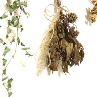 森のブラウンスワッグ ヘクソカズラと木の実 天然 素材 ナチュラル A(ドライフラワー)