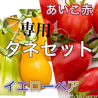 専用希少イエローペアとあいこのミニトマトの種セット(その他)