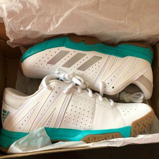 アディダス(adidas)のadidas バドミントンシューズ P3 WUCHT DB2171 24.0cm(バドミントン)