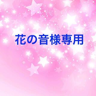 花の音様専用 スターフラワーミニ 3セット(ドライフラワー)