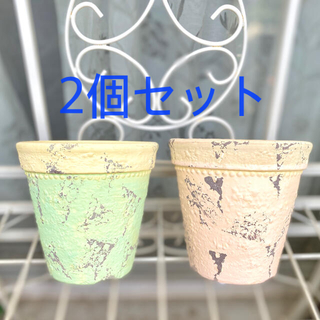 サラグレース(Sarah Grace)のコベントガーデン ペア 2個セット プランターポット 鉢 多肉植物(プランター)