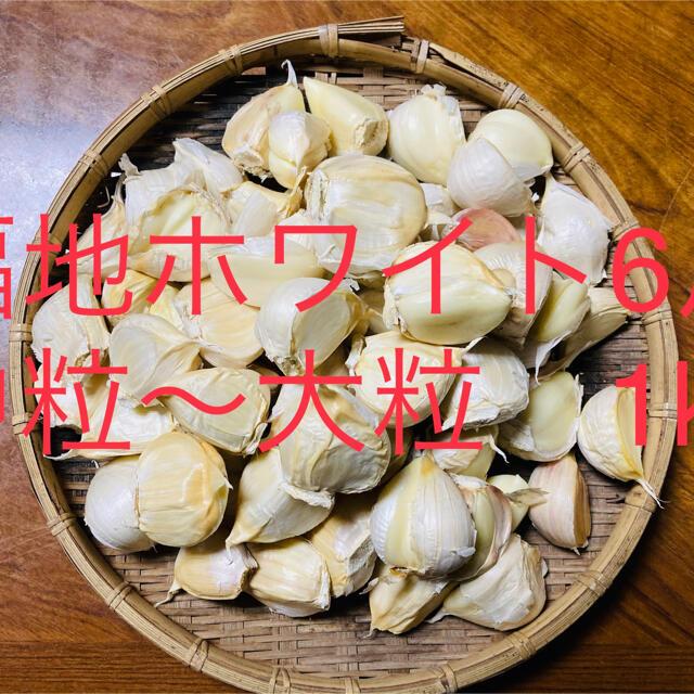 訳有 青森県産 福地ホワイト6片中粒〜大粒 生ニンニク1kg にんにく 食品/飲料/酒の食品(野菜)の商品写真