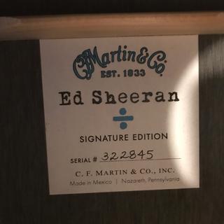 マーティン(Martin)のピロロさん専用(アコースティックギター)
