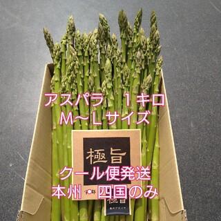 栃木県産アスパラガス M〜Lサイズ 1キロ(野菜)